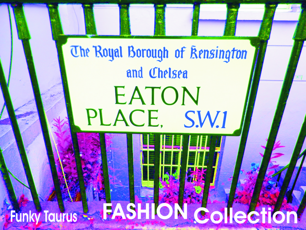 KENSINGTON FASHION COLLECTION
